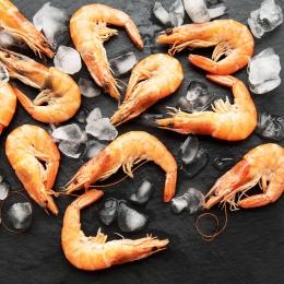 Crevettes Cuites 40/60